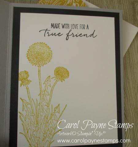 Stampin_up_garden_wishes_carolpaynestamps7 (2)