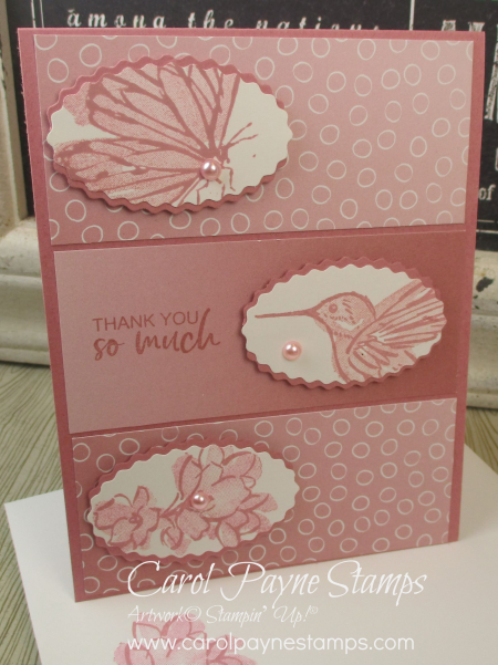Stampin_up_a_touch_of_ink_carolpaynestamps10