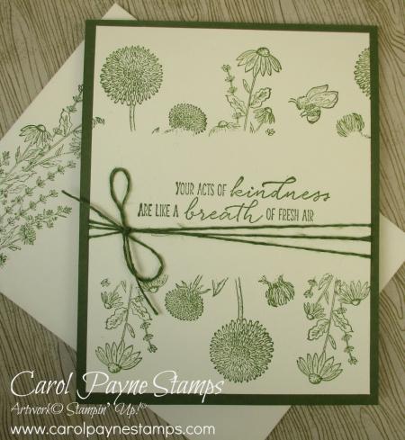 Stampin_up_garden_wishes_carolpaynestamps4