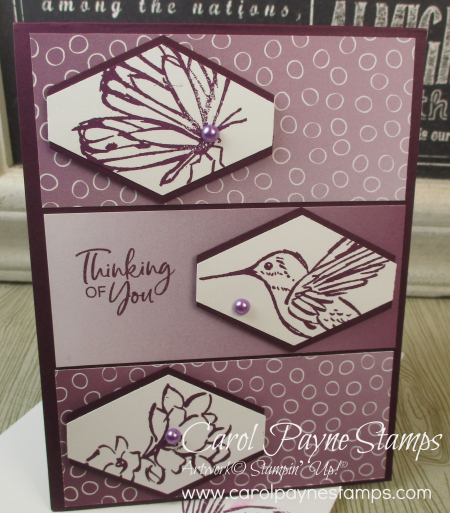 Stampin_up_a_touch_of_ink_carolpaynestamps6