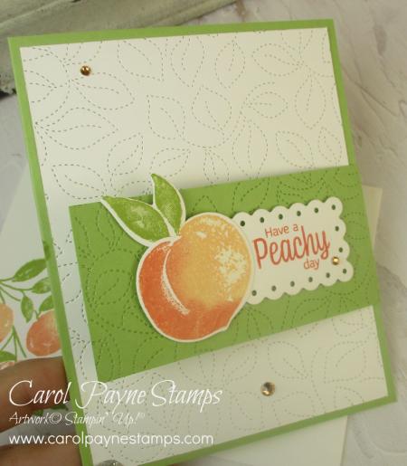 Stampin_up_sweet_as_a_peach_fun_flap_fold_carolpaynestamps3 (2)