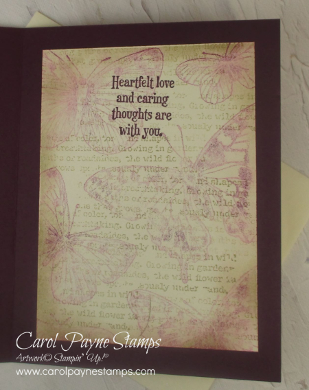 Stampin_up_brilliant_wings_quiet_meadow_carolpaynestamps6
