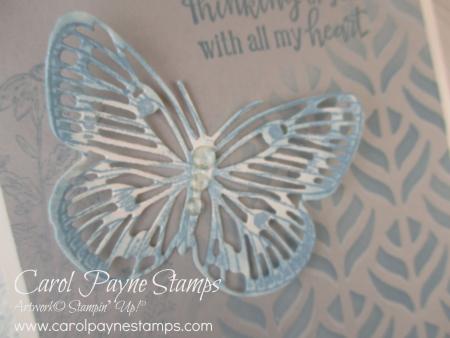 Stampin_up_butterfly_brilliance_balmy_blue_carolpaynestamps7