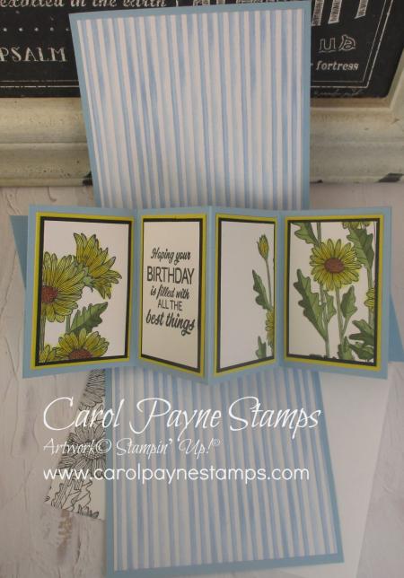 Stampin_up_daisy_garden_carolpaynestamps6 (2)