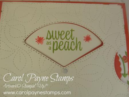 Stampin_up_sweet_as_a_peach_carolpaynestamps2