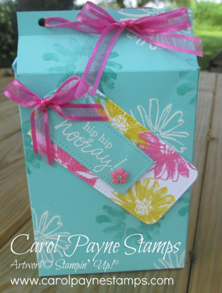 Stampin_up_color_&_contour_happiest_birthday_carolpaynestamps11