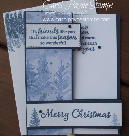 Stampin_up_beauty_of_friendship_carolpaynestamps1