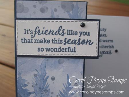 Stampin_up_beauty_of_friendship_carolpaynestamps2