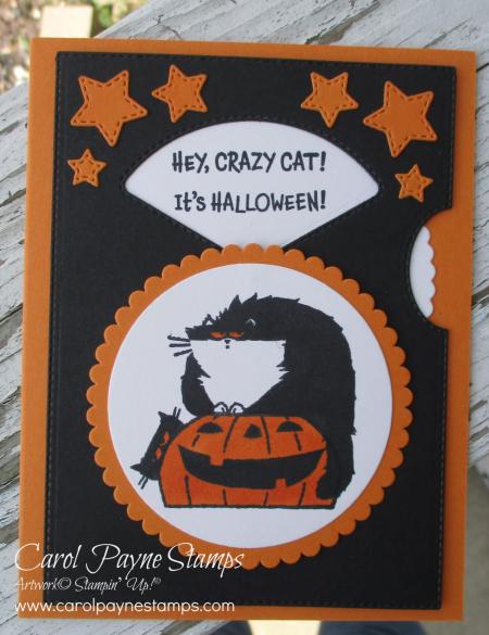 Stampin_up_clever_cats_carolpaynestamps2