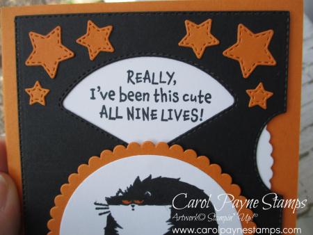 Stampin_up_clever_cats_carolpaynestamps3