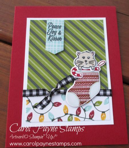 Stampin_up_sweet_little_stockings_carolpaynestamps1