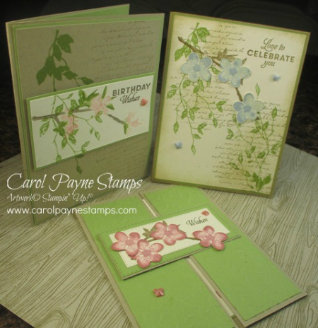 Stampin_up_butterfly_wishes_class_carolpaynestamps1