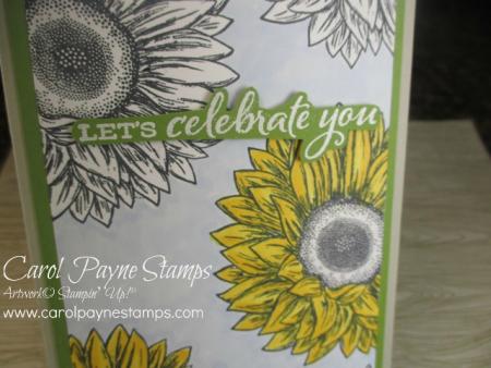 Stampin_up_celebrate_sunflowers_slim_carolpaynestamps4