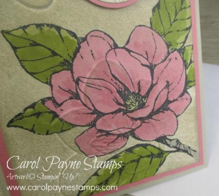 Stampin_up_good_morning_magnolia_slim_carolpaynestamps7