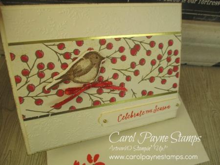 Stampin_up_birds_&_branches_carolpaynestamps2