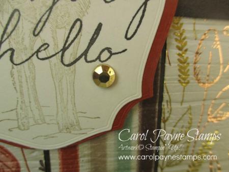 Stampin_up_tasteful_touches_carolpaynestamps4