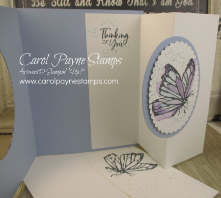 Stampin_up_a_touch_of_ink_carolpaynestamps3