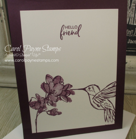 Stampin_up_a_touch_of_ink_carolpaynestamps7