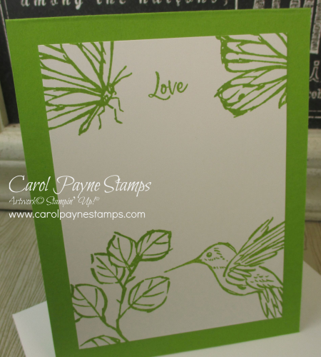 Stampin_up_a_touch_of_ink_carolpaynestamps9