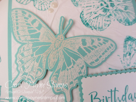 Stampin_up_butterfly_bouquet_carolpaynestamps3