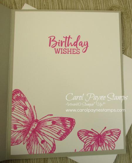 Stampin_up_butterfly_brilliance_carolpaynestamps6