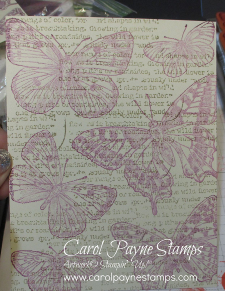 Stampin_up_brilliant_wings_quiet_meadow_carolpaynestamps1