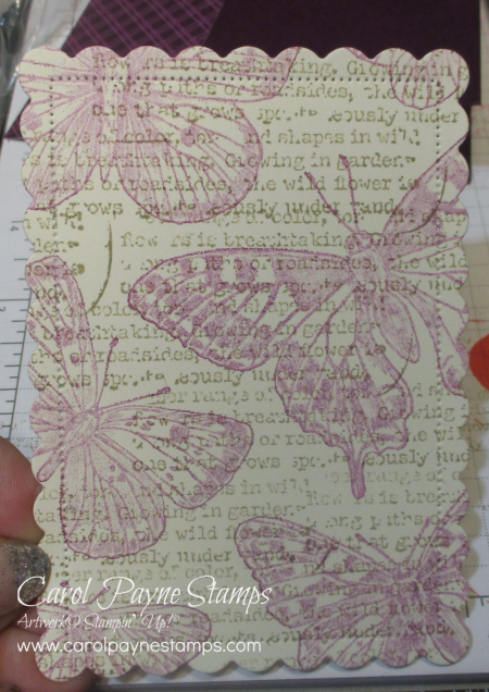 Stampin_up_brilliant_wings_quiet_meadow_carolpaynestamps2