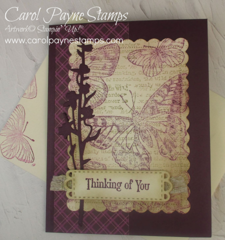 Stampin_up_brilliant_wings_quiet_meadow_carolpaynestamps4