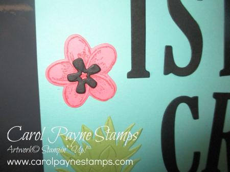 Stampin_up_timeless_tropical_carolpaynestamps2