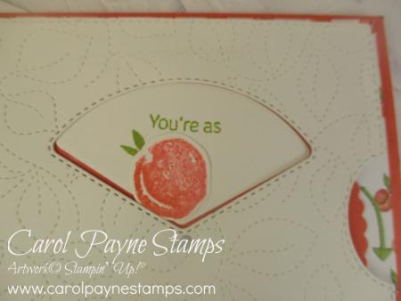 Stampin_up_sweet_as_a_peach_carolpaynestamps4
