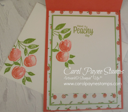 Stampin_up_sweet_as_a_peach_carolpaynestamps8