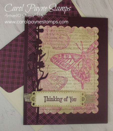 Stampin_up_brilliant_wings_quiet_meadow_carolpaynestamps7
