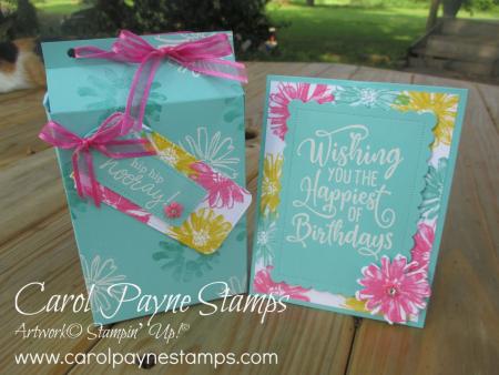 Stampin_up_color_&_contour_happiest_birthday_carolpaynestamps8