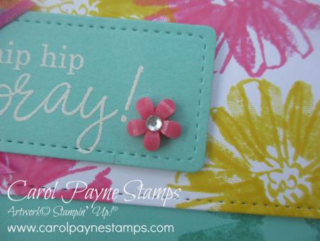 Stampin_up_color_&_contour_happiest_birthday_carolpaynestamps14