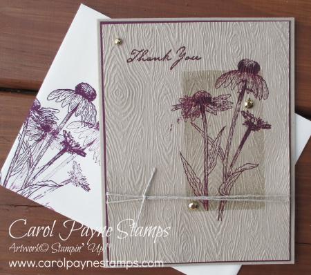 Stampin_up_natures_harvest_blackberry_bliss_carolpaynestamps1