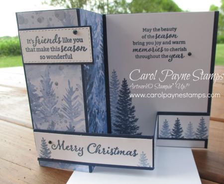 Stampin_up_beauty_of_friendship_carolpaynestamps3