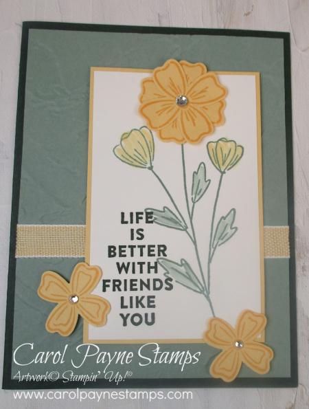Stampin_up_flowers_of_friendship_carolpaynestamps3 (2)