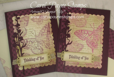 Stampin_up_brilliant_wings_quiet_meadow_carolpaynestamps3