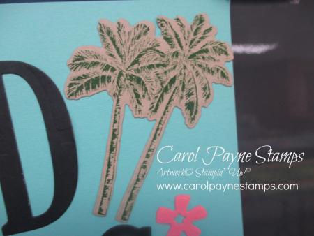 Stampin_up_timeless_tropical_carolpaynestamps4