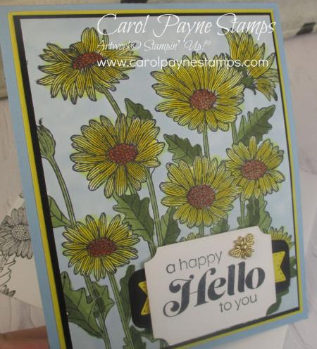 Stampin_up_daisy_garden_carolpaynestamps2 (2)