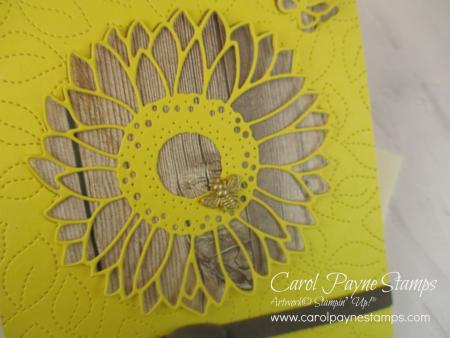 Stampin_up_celebrate_sunflowers_carolpaynestajmps4