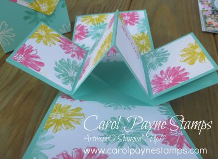 Stampin_up_color_&_contour_happiest_birthday_carolpaynestamps5