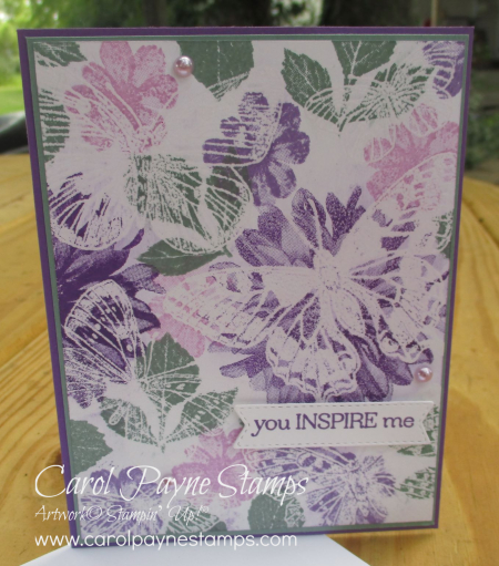 Stampin_up_delicate_dahlias_butterfly_brilliance_carolpaynestamps5
