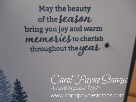 Stampin_up_beauty_of_friendship_carolpaynestamps4