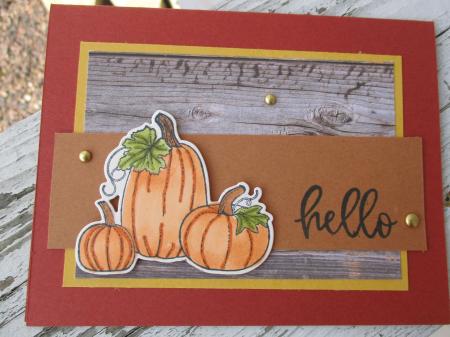 Stampin_up_pretty_pumpkins_carolpaynestamps4